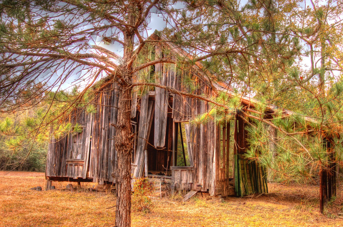 """3. This abandoned barn, titled """"The Pines,"""" could definitely stand a little TLC. Don't you agree?"""