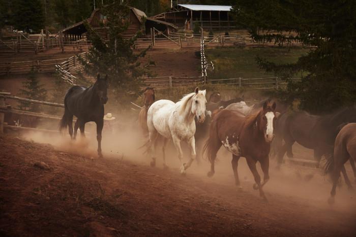 5. Gros Ventre River Ranch