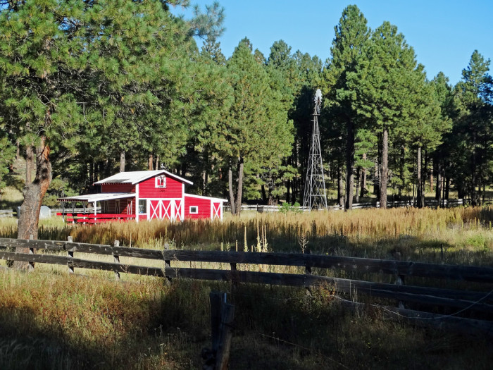 4. Another classic red barn sitting under the pines, this time near Flagstaff.