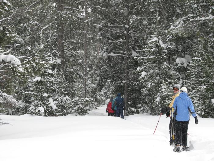 6. Snowshoeing