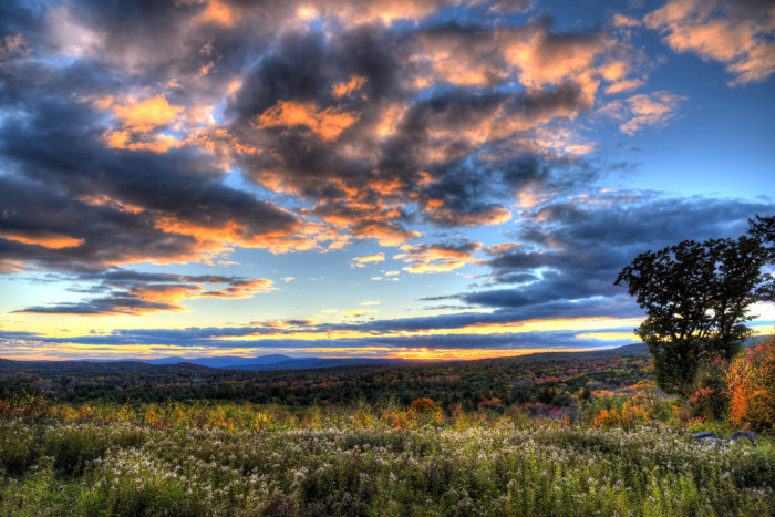 14. A gentle sunset over the buds and blossoms of the Berkshires.