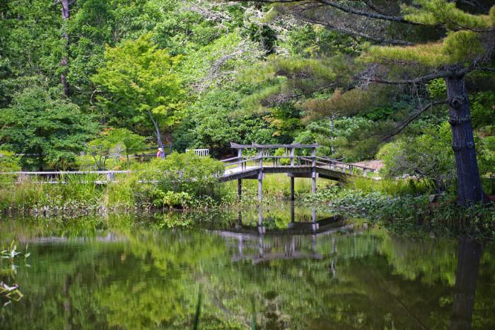 2. Mytoi Japanese Gardens, Chappaquiddick