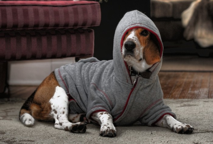 5. Speaking of clothes, we carry sweaters or hoodies in summer.