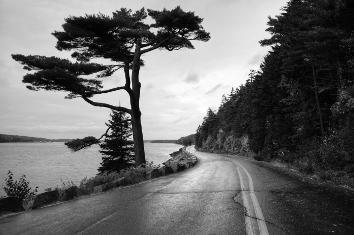 6. Sargent Road, Acadia National Park