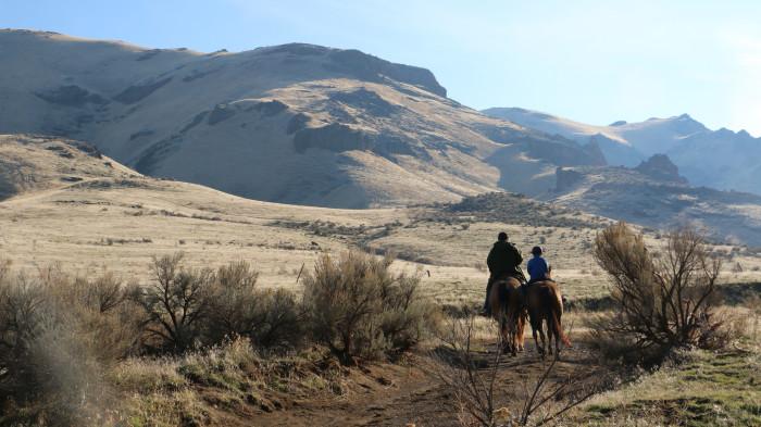 4. On Horseback