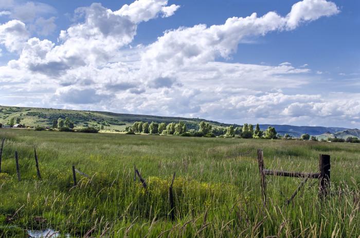 5. Hey, Yampa hay fields!
