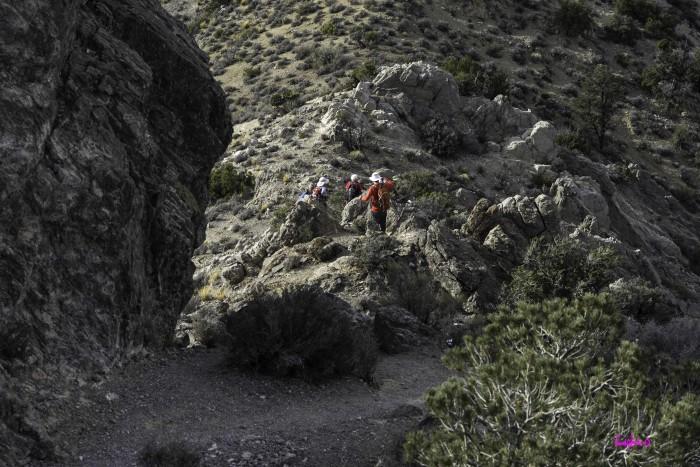 4. Turtlehead Peak Trail