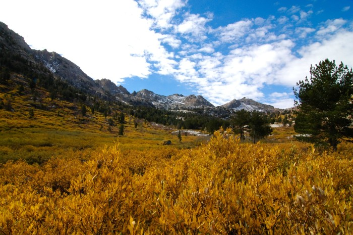 8. A gorgeous view of Lamoille Canyon.
