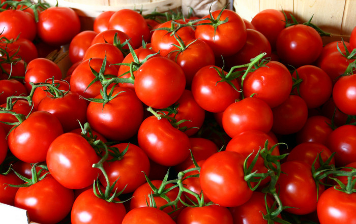 14. Jersey Tomatoes are just okay.