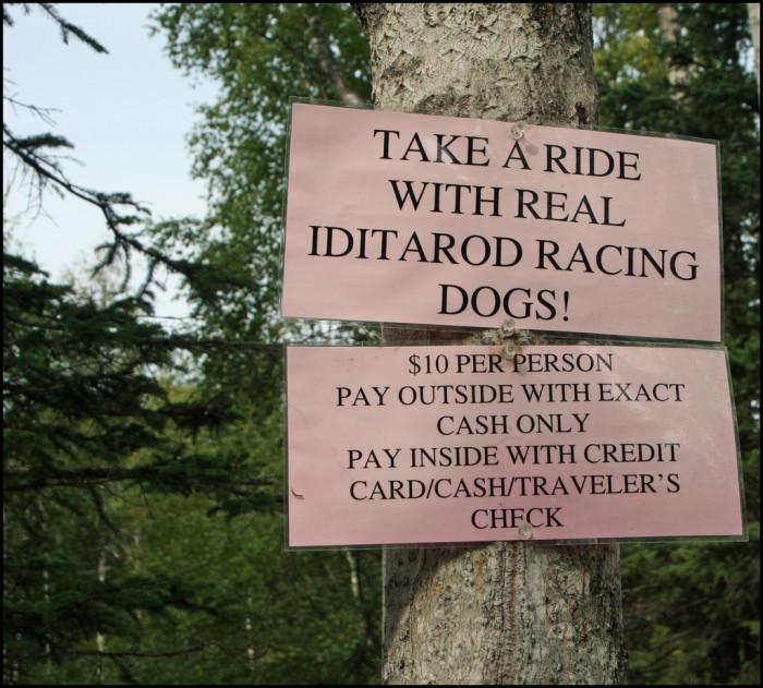 5) Iditarod Sled Dog Museum