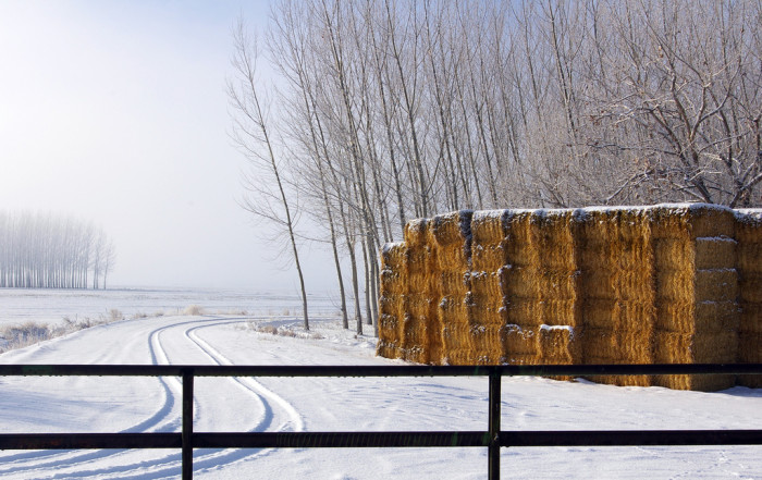 17. A pretty rural scene of snow sleeping atop a hay perch.