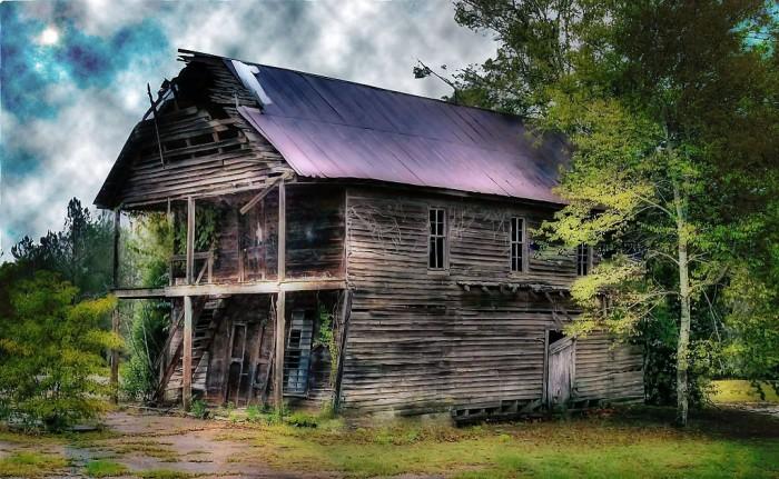 7. A wonderful shot of Covington Store in Bertha, Alabama.