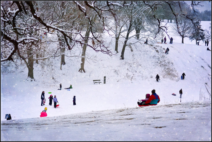 3. Grab a sled and take the kids out to your local sledding hill.