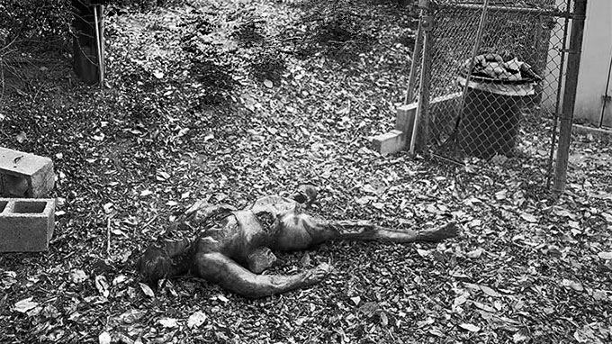 3) The Body Farm - University of Tennessee at Knoxville