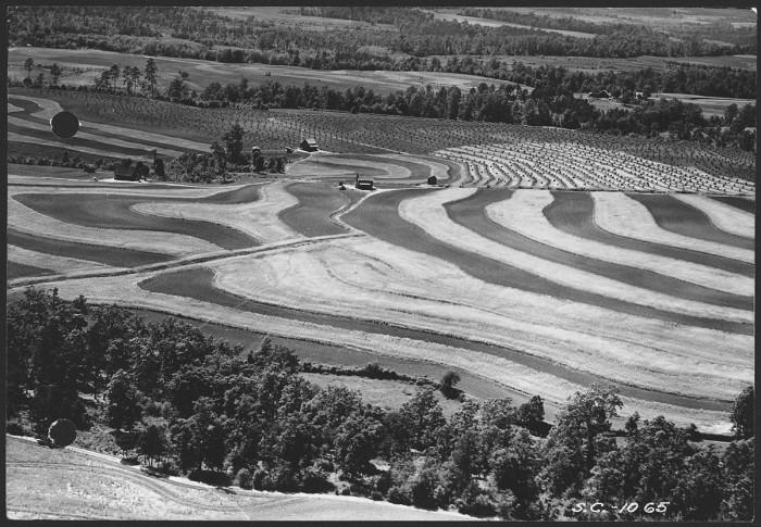 3.Aerial view of contour farming.