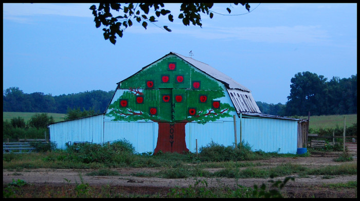14) A fun, unexpected Maryland barn daring to be different.