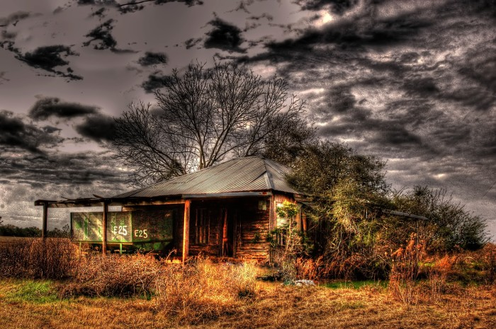 """8. Titled """"Peanut Wagon,"""" this abandoned building is located in New Brockton, Alabama."""