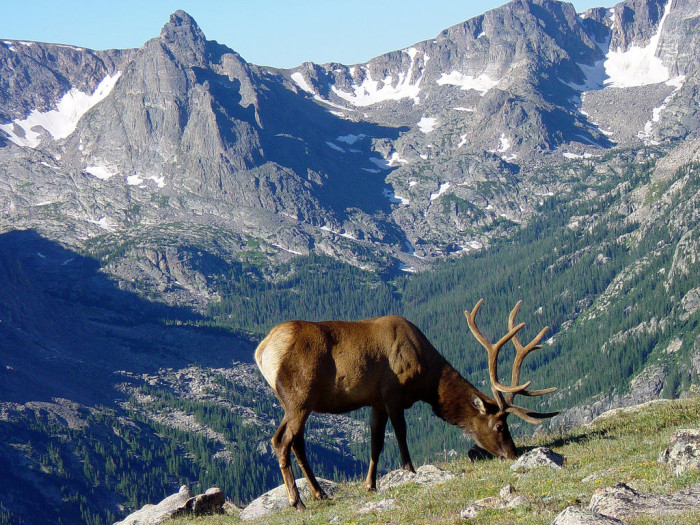7. The Centennial State is  home to more than 300 state wildlife areas and 42 state parks.