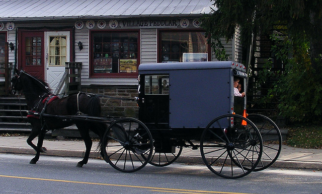 5. Where else can you see Amish buggies on the street? (Well, maybe Ohio. But that's beside the point.)