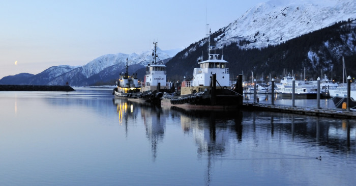 6) Tugboats in Seward's Small Boat Harbor on a clear morning.