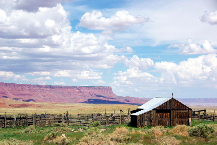 3. There is also this beautifully weathered barn that looks stunning sitting in front of the Vermilion Cliffs.