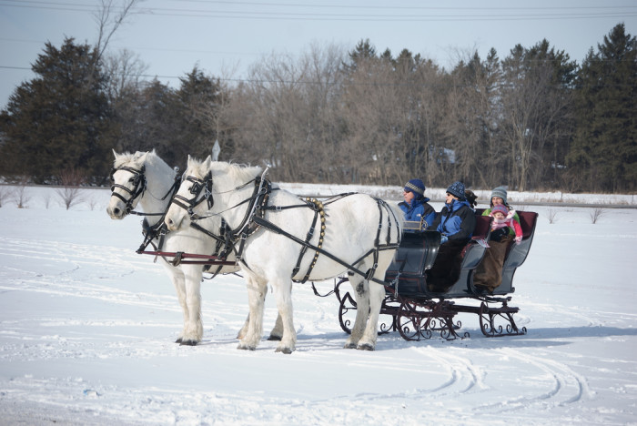 4. Or enjoy a scenic sleigh ride through the snow at Jester Park Equestrian Center in Granger.