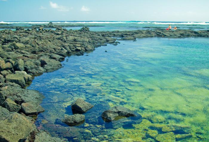 8 Beautiful Tide Pools In Hawaii