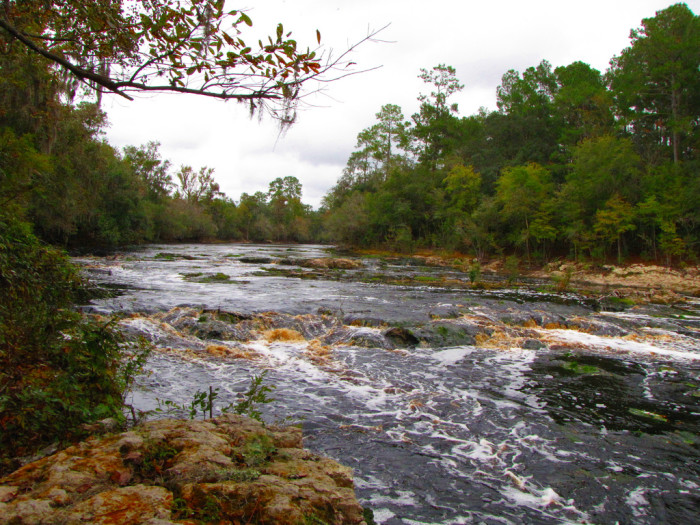 7. Big Shoals State Park, White Springs