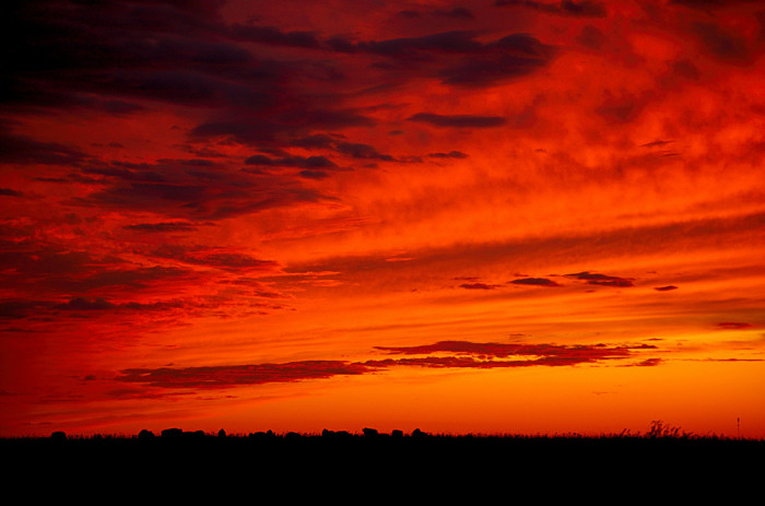 8. ...and mind-blowing sunsets.