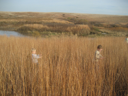 4. Spring Creek Prairie Audubon Center, Denton
