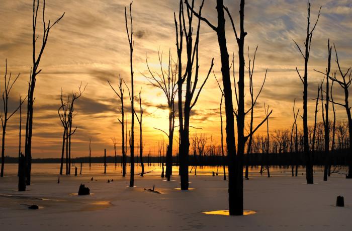 16. A spectacular sunrise shot of Manasquan Reservoir.