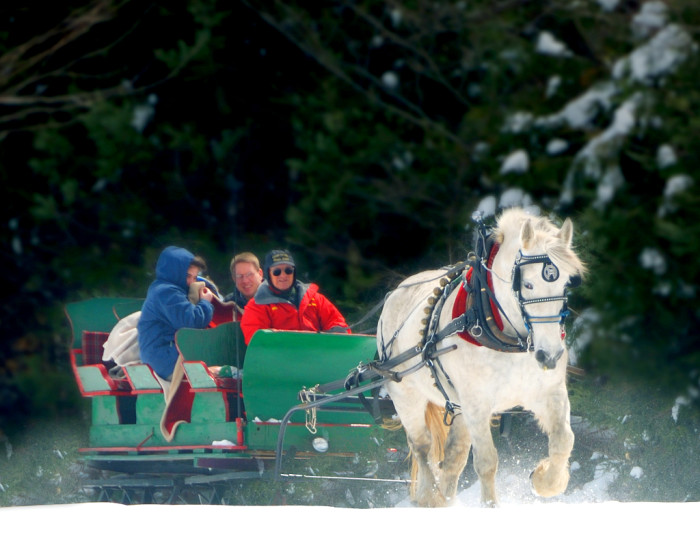 9.  Take a moonlight sleigh ride.