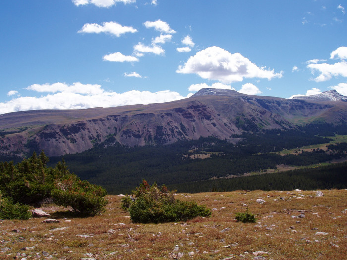 Looking southeast into Henry's Fork Basin.