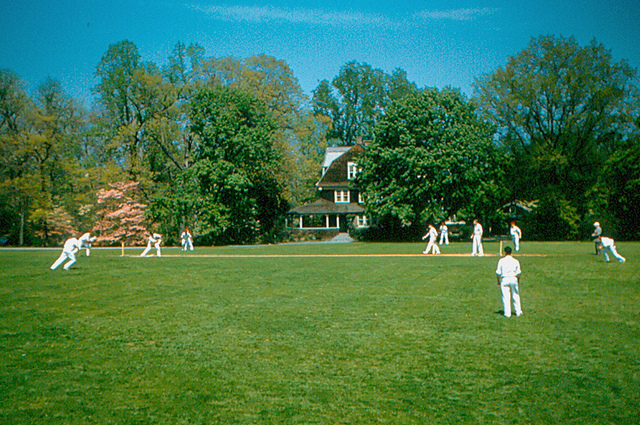3. Some boys play cricket at Haverford College in 1956.