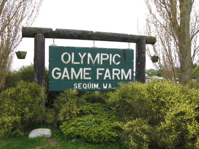 2. Olympic Game Farm, Sequim