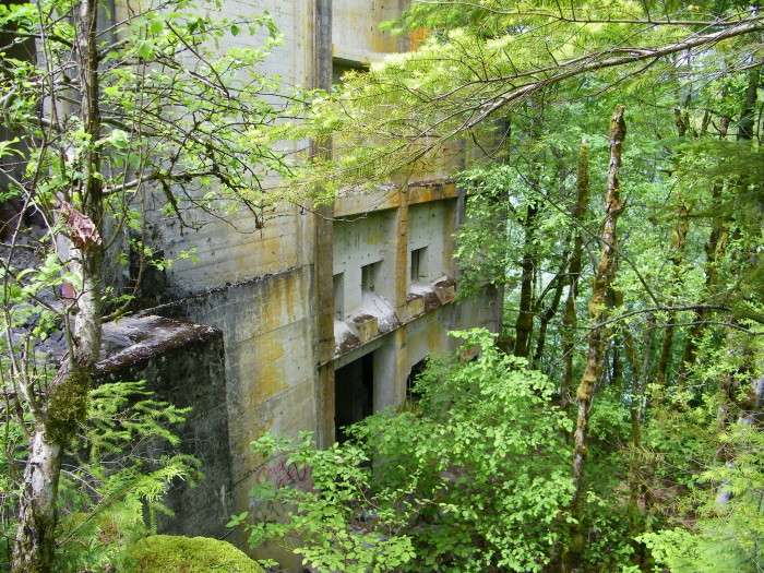 8. A structure near an abandoned limestone mine, engulfed by trees and moss.