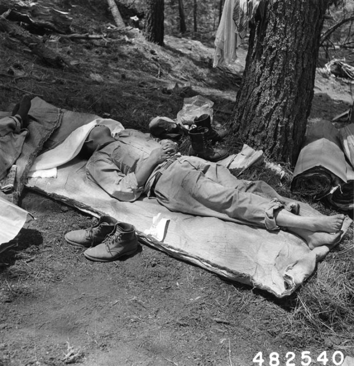 7. Firefighting has really progressed in the last few decades. This photo shows a forest firefighter taking some time to rest after a long, summer night in the Coronado National Forest in 1956.