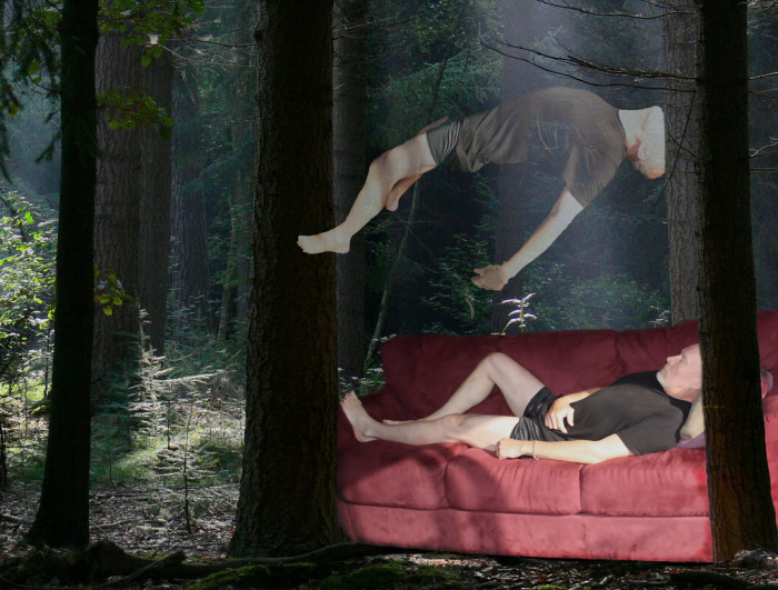 5.  Dreaming in the woods - What The???