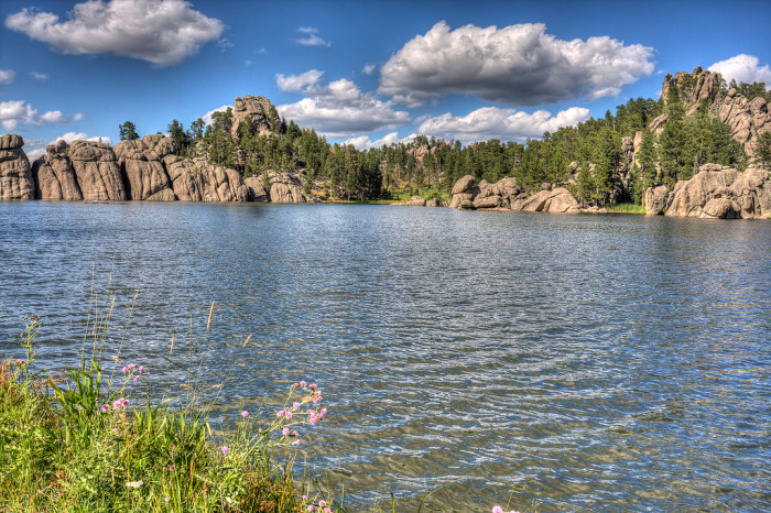 Custer State Park - state parks in sd