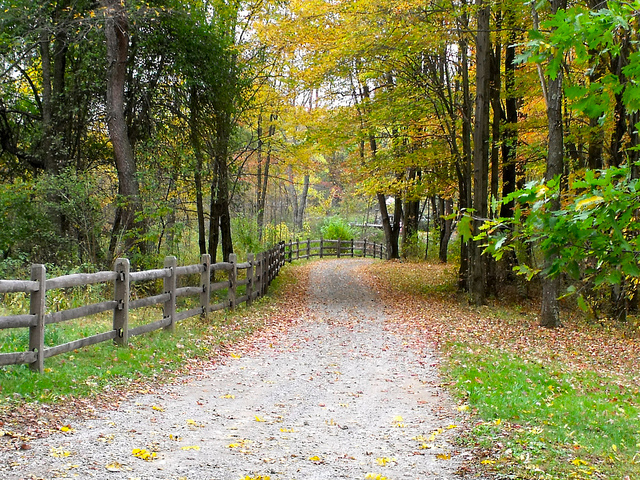 13. Winding roads, stunning foliage, a rustic fence. Everything is a little bit more charming in the countryside.