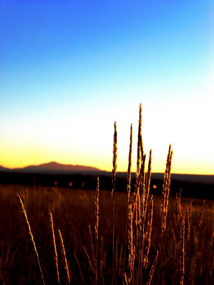 10. Eastern Plains & Pikes Peak (Colorado Springs)