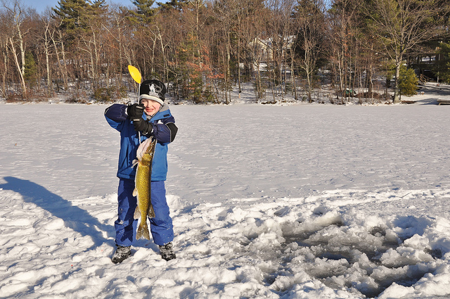 Embrace the cold and go ice fishing.
