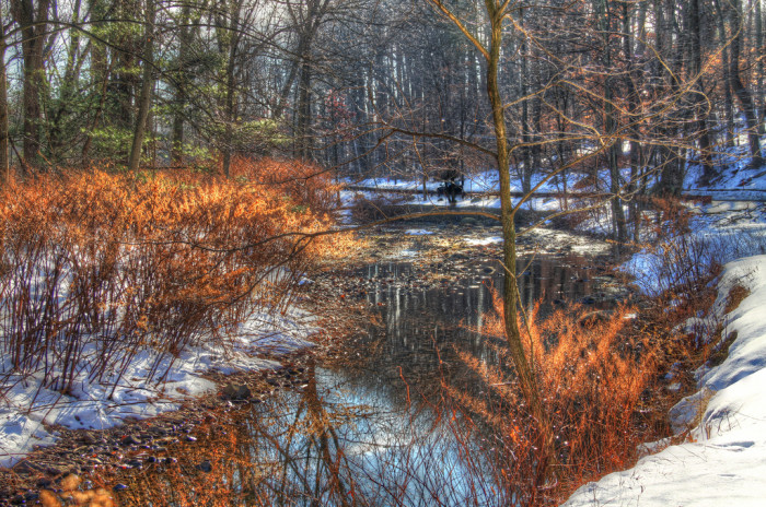 13. A beautiful shot of South Mountain Reservation in the winter.