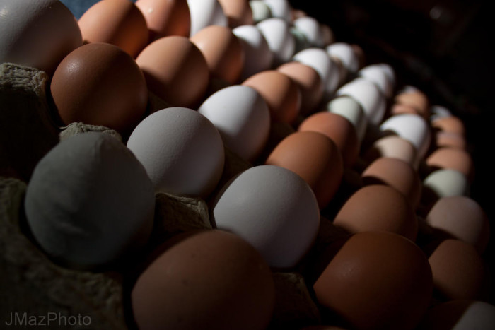 6. Each year, Arizona's hens lay about 5.8 billion eggs each year, which is more than enough to provide each American citizen with a dozen eggs.