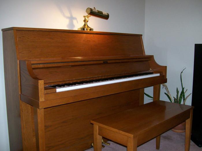 6. A musical instrument.