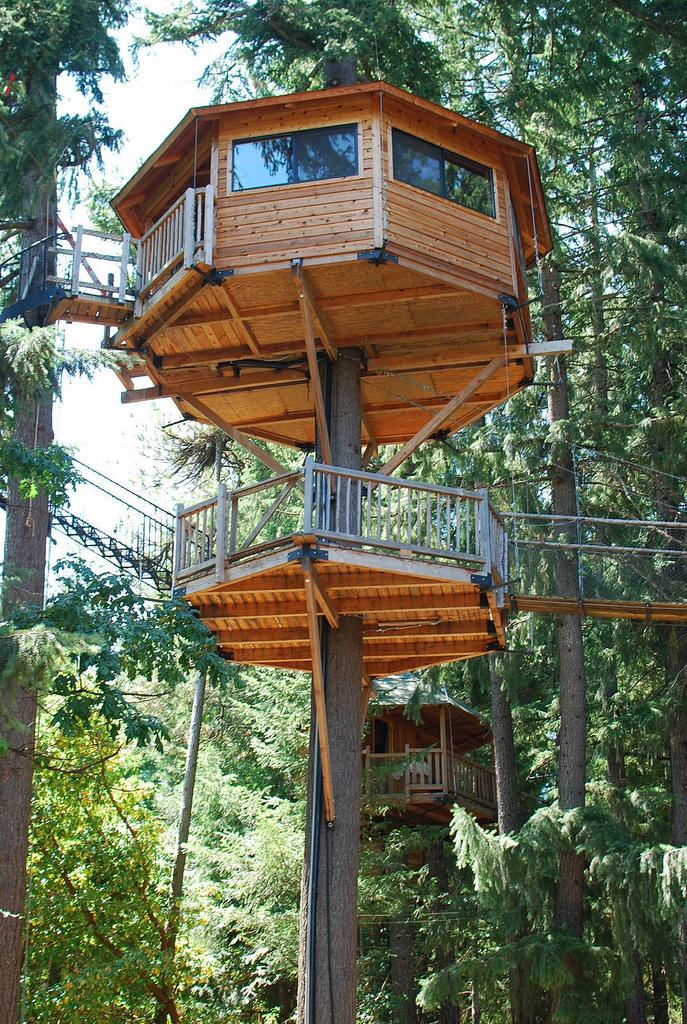 "6. Sleep in a treehouse ""treesort""."