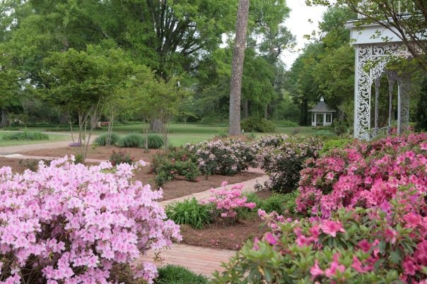6. Wister Gardens