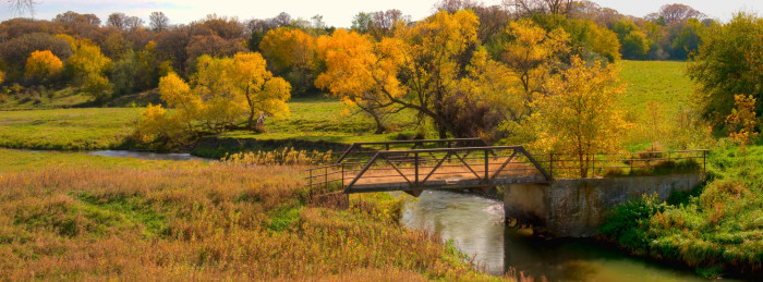 6. And unlike living in a city, you can actually enjoy the beautifully colored trees and fields.
