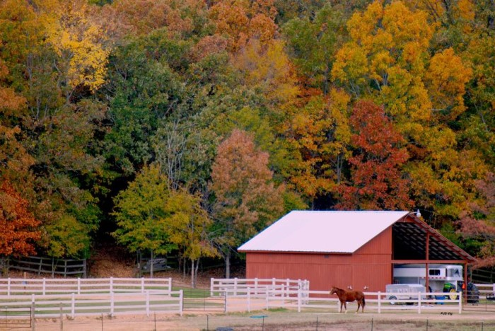 6. Rural Scenery Adorned in Fall Colors