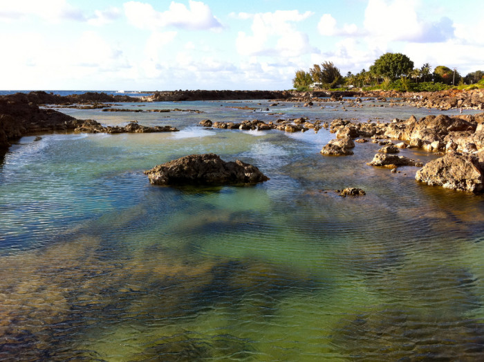 8 beautiful tide pools in hawaii for Hawaii tides for fishing
